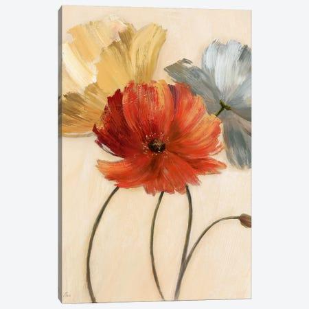 Poppy Palette I 3-Piece Canvas #NAN490} by Nan Canvas Print