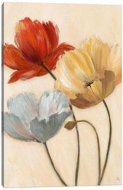 Poppy Palette II Canvas Art Print