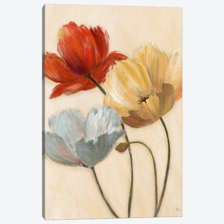 Poppy Palette II 3-Piece Canvas #NAN491} by Nan Canvas Art Print