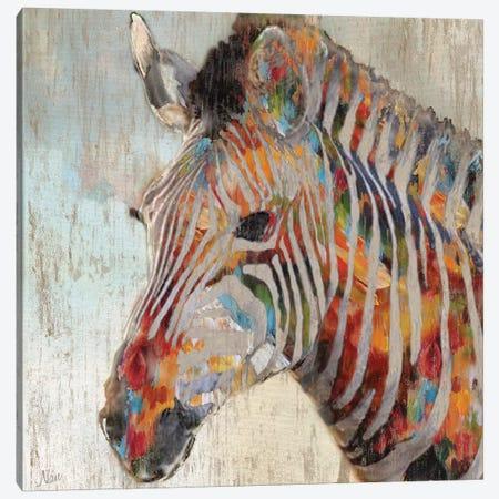 Paint Splash Zebra Canvas Print #NAN49} by Nan Canvas Art Print