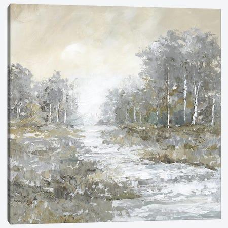 Babbling Brook II Canvas Print #NAN500} by Nan Art Print