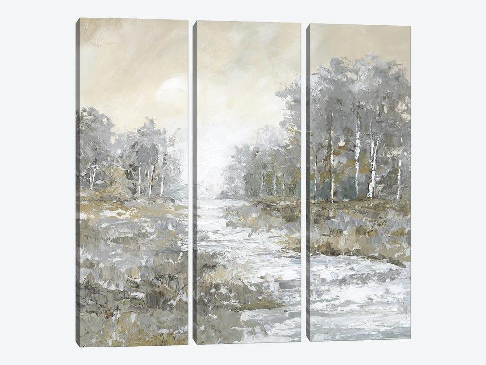 Babbling Brook II by Nan 3-piece Canvas Wall Art