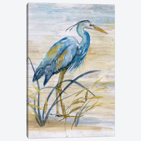 Blue Heron I Canvas Print #NAN502} by Nan Art Print