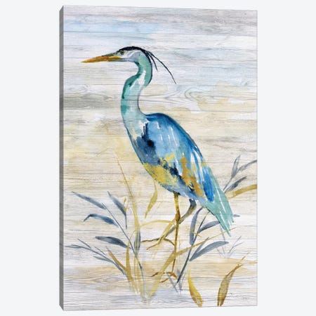 Blue Heron II Canvas Print #NAN503} by Nan Canvas Print