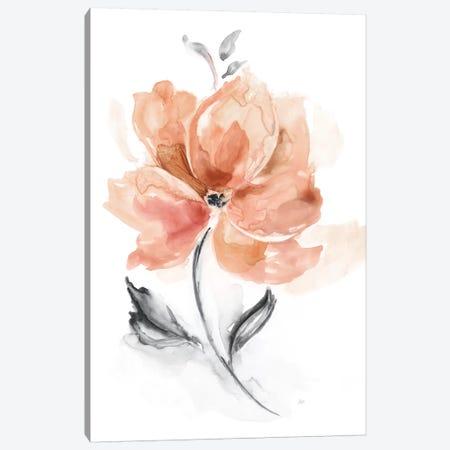 Soft Sensation I Canvas Print #NAN520} by Nan Canvas Art Print