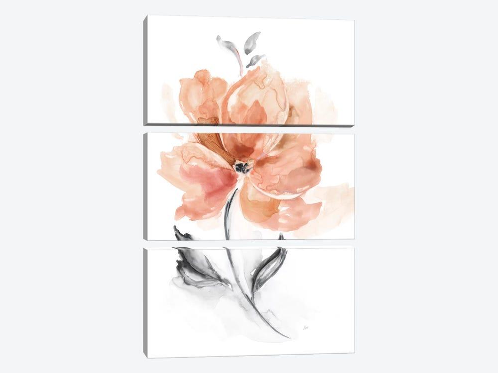Soft Sensation I by Nan 3-piece Canvas Wall Art