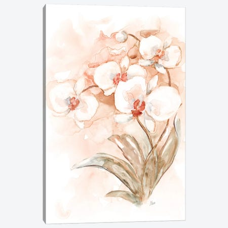 White and Coral Orchid II Canvas Print #NAN528} by Nan Art Print