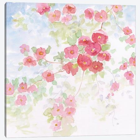 Pink Pleasure II Canvas Print #NAN549} by Nan Canvas Print