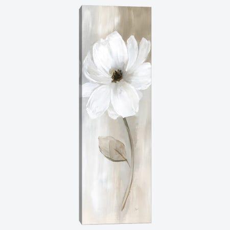 Sheer Elegance II Canvas Print #NAN554} by Nan Canvas Print