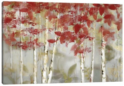 Autumn Forest Canvas Art Print