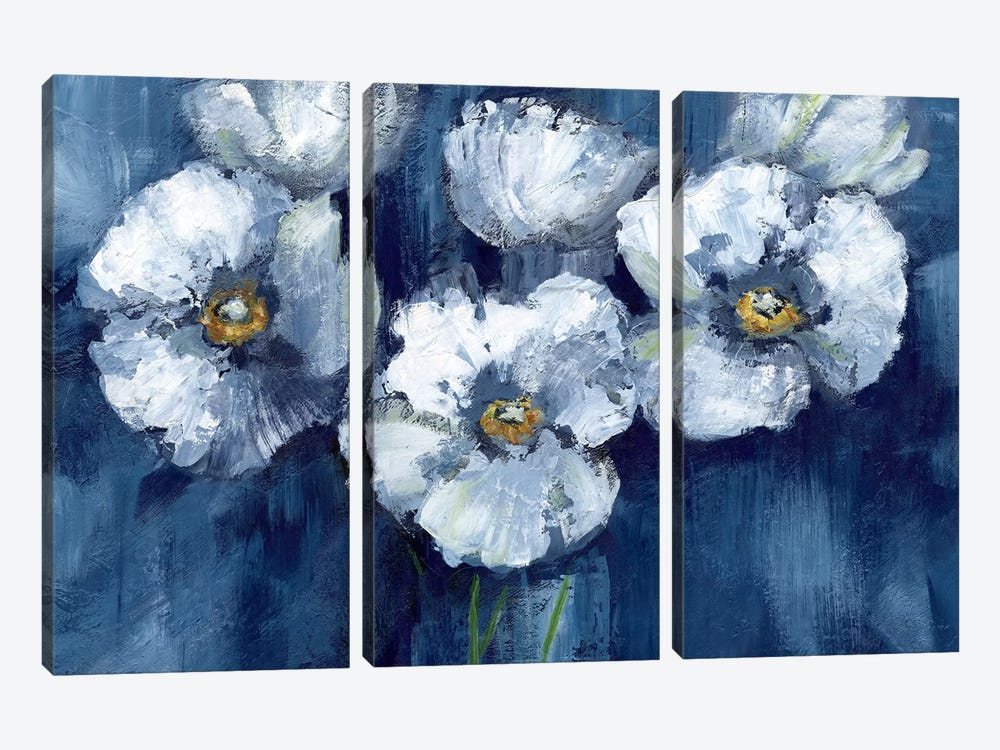Blooming Poppies by Nan 3-piece Canvas Wall Art