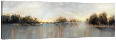 Rain At Dawn Canvas Art Print