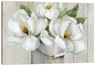 Shiplap Magnolias Canvas Art Print