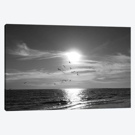 Taking Flight Canvas Print #NAN579} by Nan Canvas Art