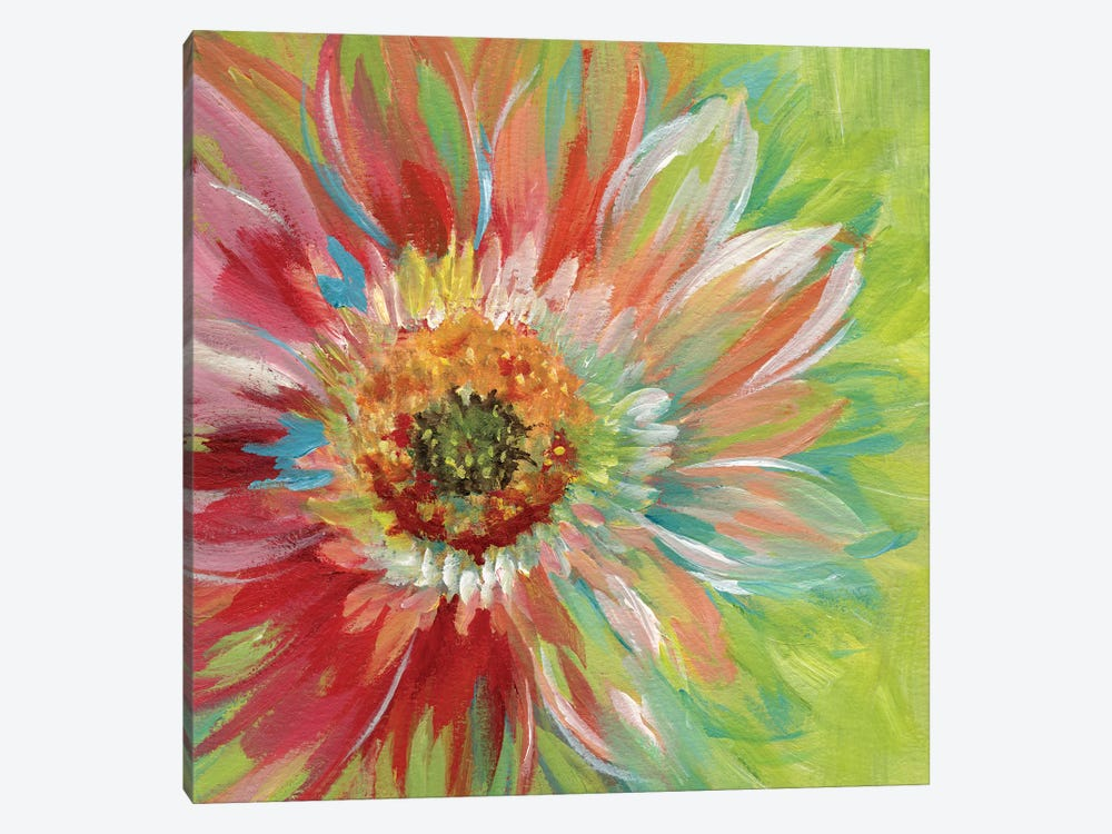 Bright Sunburst by Nan 1-piece Canvas Wall Art