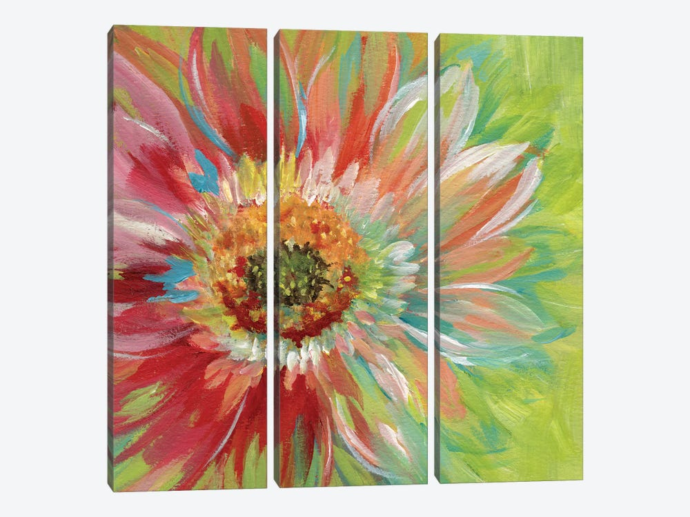 Bright Sunburst by Nan 3-piece Canvas Art