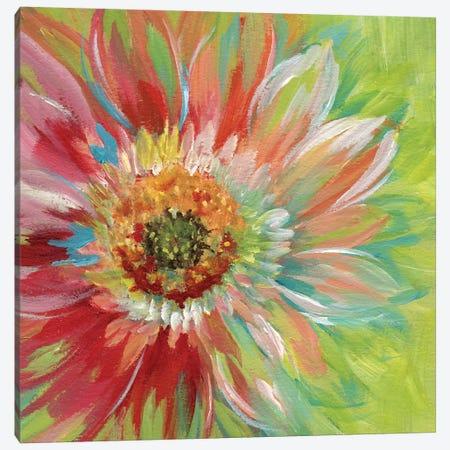 Bright Sunburst Canvas Print #NAN57} by Nan Canvas Art Print