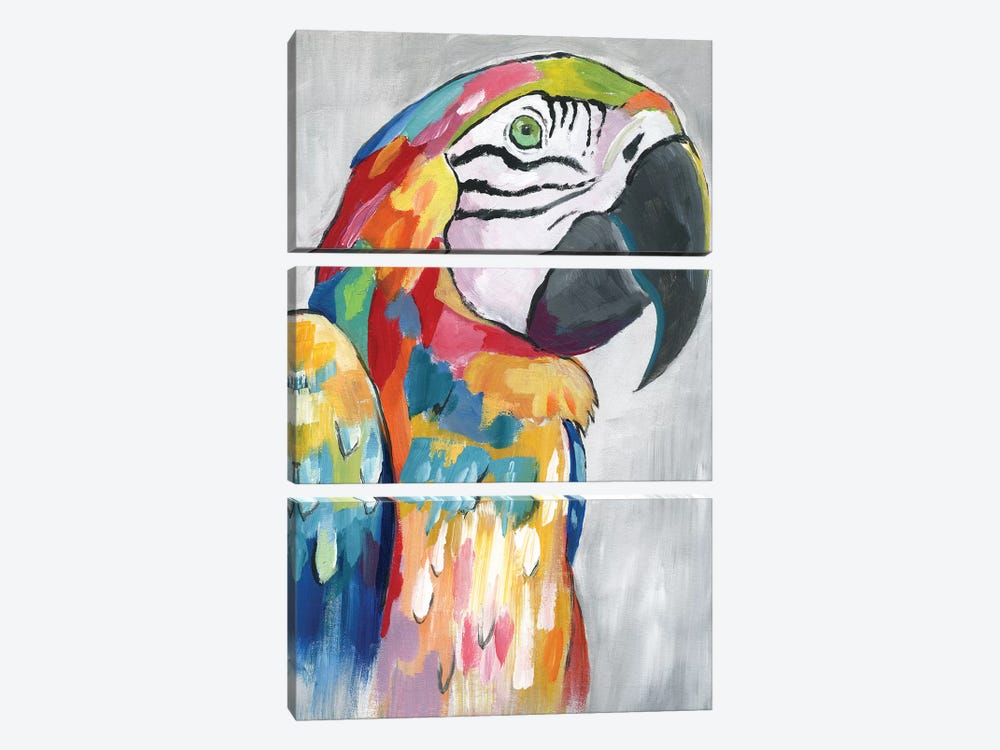 Vibrant Parrot by Nan 3-piece Canvas Art Print