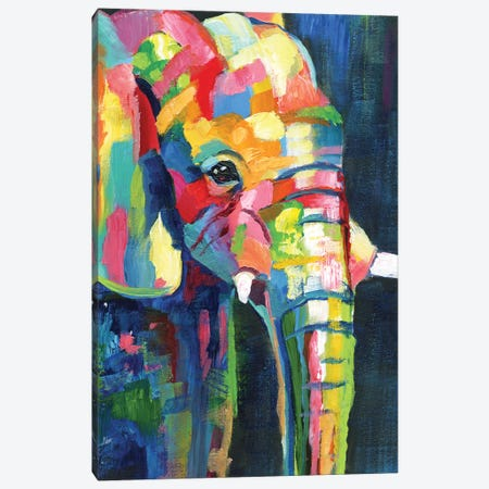 Vibrant Elephant Canvas Print #NAN585} by Nan Canvas Art