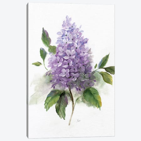 Lilac Romance I 3-Piece Canvas #NAN607} by Nan Art Print