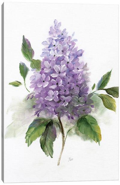 Lilac Romance I Canvas Art Print