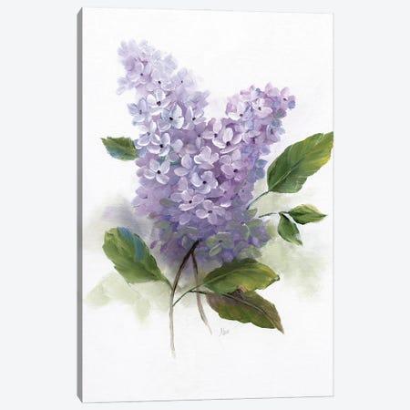 Lilac Romance II Canvas Print #NAN608} by Nan Canvas Wall Art