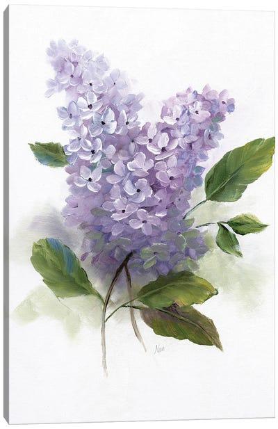 Lilac Romance II Canvas Art Print