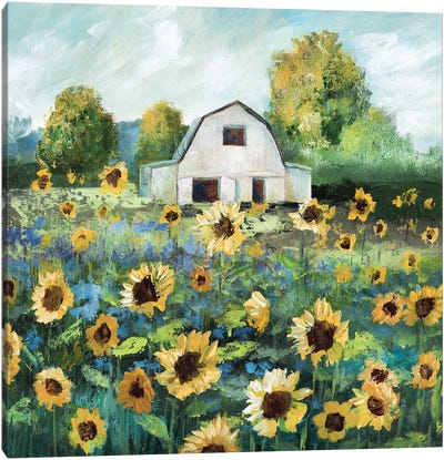 Sunflower Barn Canvas Art Print