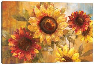 Sunflower Cheer Canvas Art Print