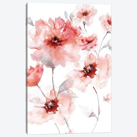 Translucent Blush I Canvas Print #NAN623} by Nan Canvas Art