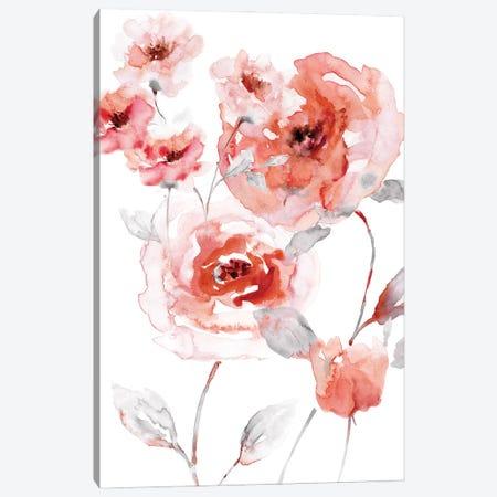 Translucent Blush II Canvas Print #NAN624} by Nan Canvas Print