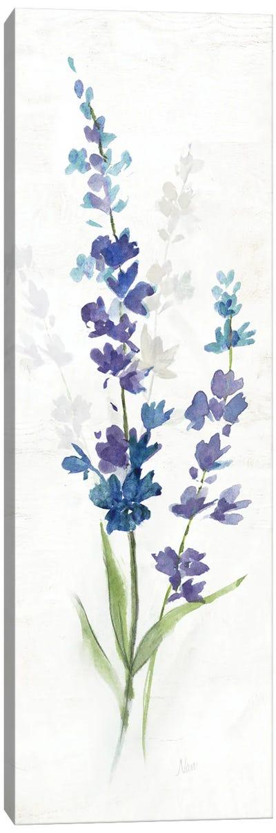 Fresh Cut Lavender II Canvas Art Print