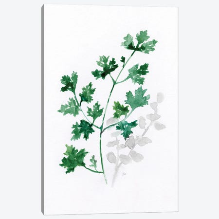 Freshly Picked I Canvas Print #NAN648} by Nan Canvas Wall Art