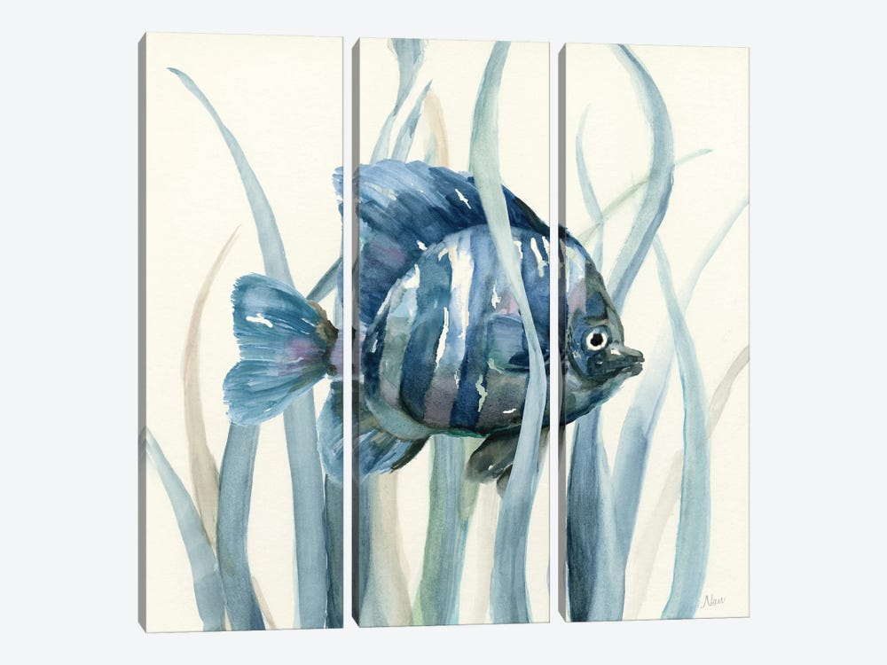 Fish in Seagrass I by Nan 3-piece Canvas Artwork