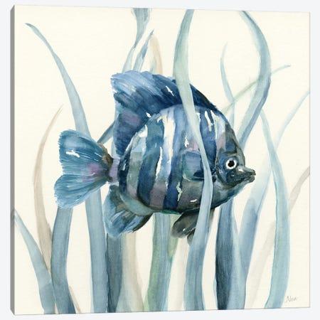 Fish in Seagrass I Canvas Print #NAN64} by Nan Canvas Artwork
