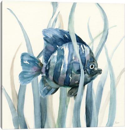 Fish in Seagrass I Canvas Art Print