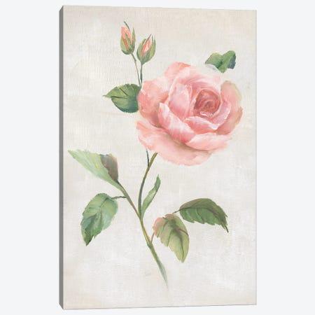 Grandiflora I Canvas Print #NAN652} by Nan Art Print