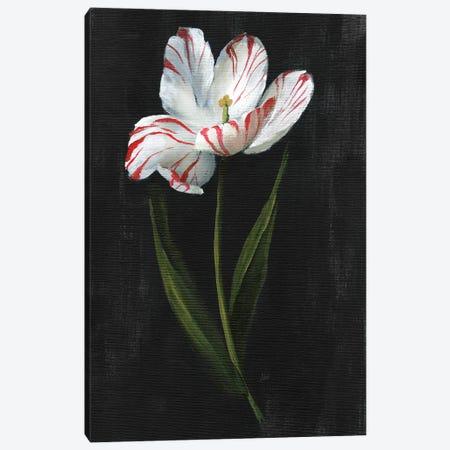 Master Botanical I Canvas Print #NAN662} by Nan Canvas Artwork