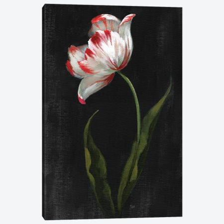 Master Botanical II Canvas Print #NAN663} by Nan Canvas Artwork