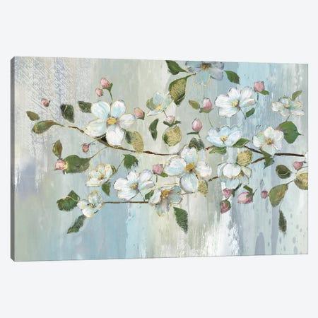 Painterly Blossoms Canvas Print #NAN666} by Nan Canvas Print