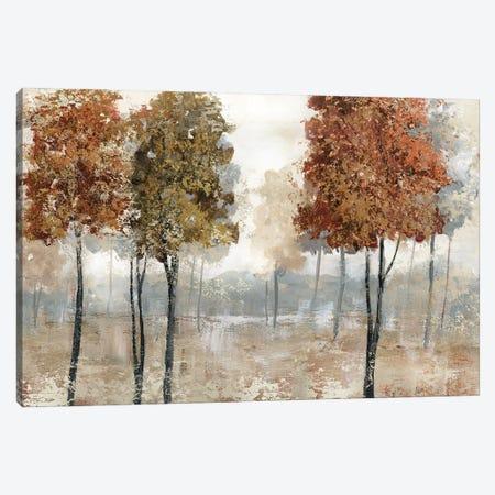 Trees of Copper Mountain Canvas Print #NAN678} by Nan Canvas Print