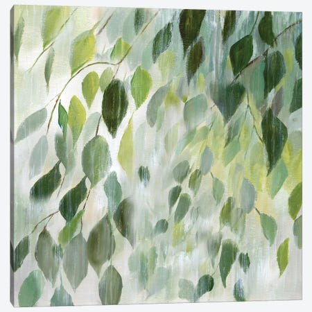 Misty Leaves Canvas Print #NAN76} by Nan Canvas Art Print