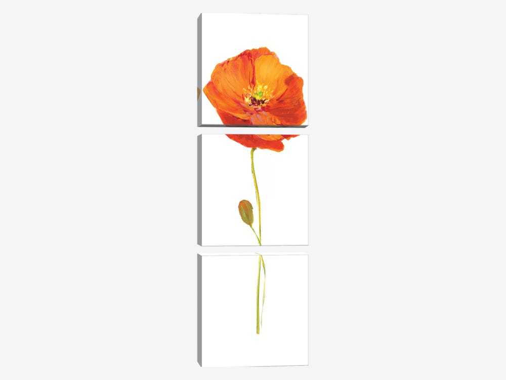 Poppy Pop II by Nan 3-piece Canvas Print