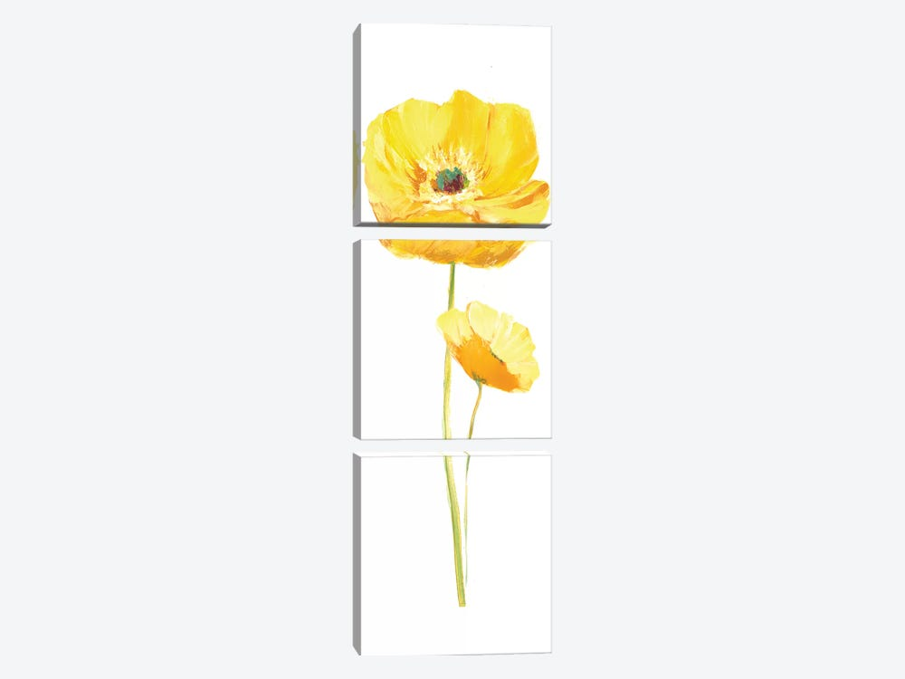 Poppy Pop III by Nan 3-piece Canvas Wall Art