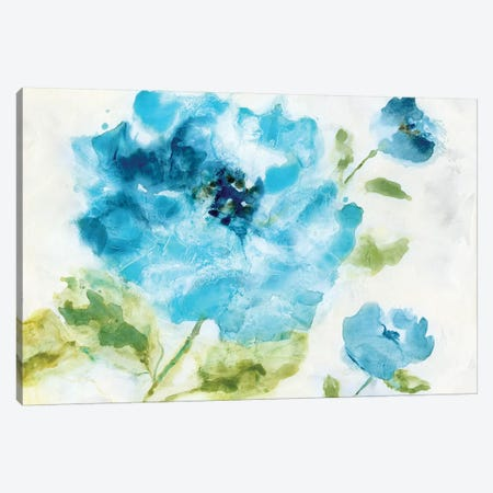 Softly Blue Canvas Print #NAN85} by Nan Canvas Art