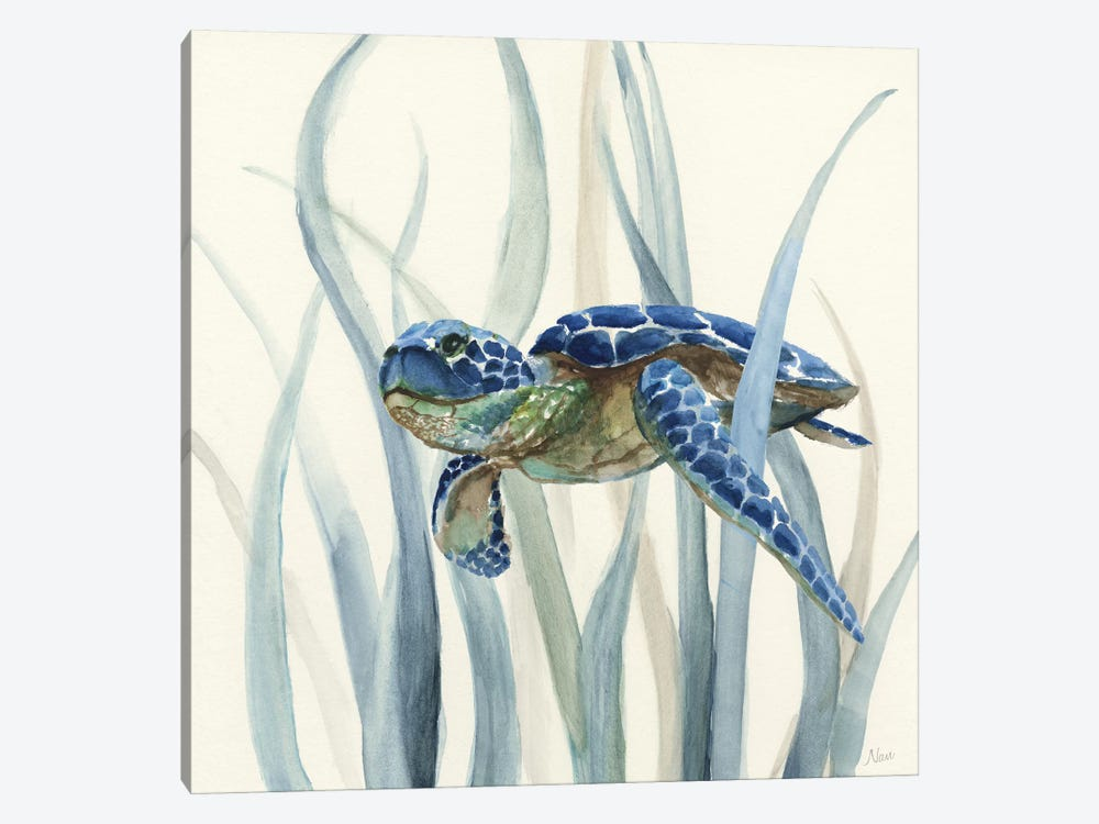 Turtle in Seagrass II by Nan 1-piece Canvas Artwork