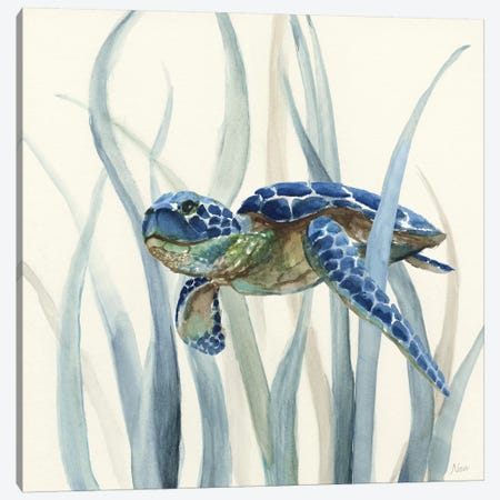 Turtle in Seagrass II Canvas Print #NAN86} by Nan Canvas Artwork