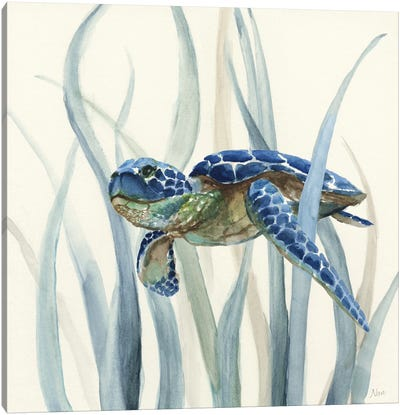 Turtle in Seagrass II Canvas Art Print