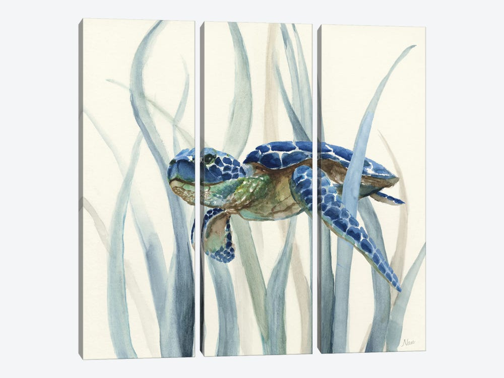 Turtle in Seagrass II by Nan 3-piece Canvas Artwork