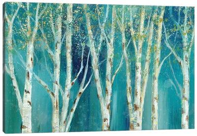 Birch On Blue Canvas Art Print